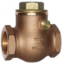 1060A Check Non-Return Valve