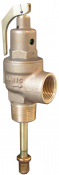 500T Nabic Safety Relief Valve