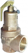 542 Nabic Safety Relief Valve
