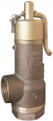707 Series Bailey Birkett Safety Relief Valve