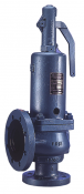 756 Bailey Birkett Safety Relief Valve