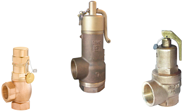 Medium Capacity Safety Relief Valves